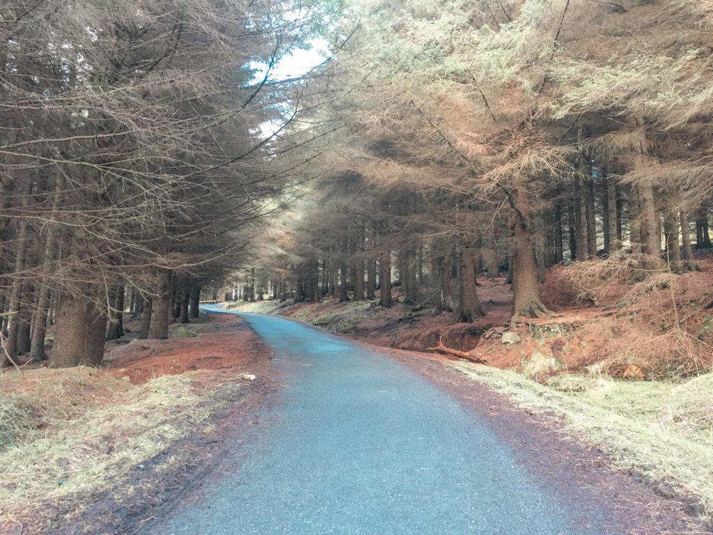 The Main Hiking Route at Ticknock Leading to Three Rock Mountain, Dublin, Ireland
