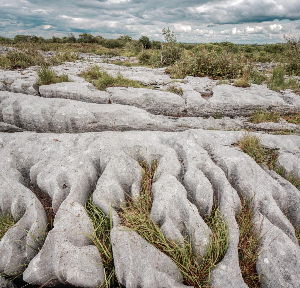The Burren, County Calre, Ireland