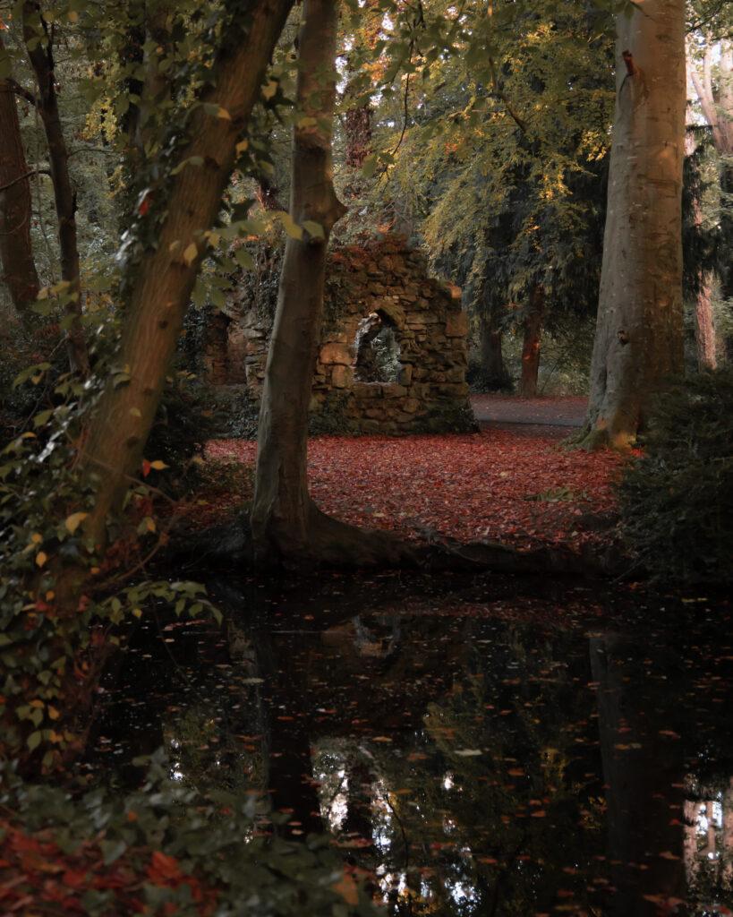 Bushy Park, Dublin, Ireland