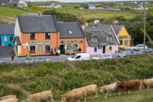 Things to do in Clare Ireland